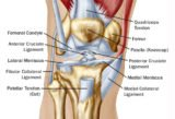 The Back Knee Aches After Falling?