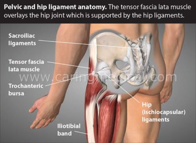 Illustration of Is Low Back Muscle Spasm Dangerous?