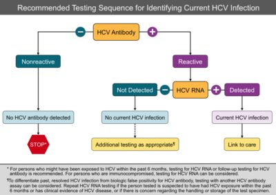 Illustration of Explanation Of Hepatitis C Diagnosis With Reactive HCV?