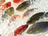 Causes Nausea And Vomiting After Consuming Fishy-smelling Foods?