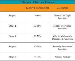 Illustration of The Difference In Each Stage Of Kidney Failure?