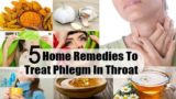 How To Treat Phlegm A Lot In The Throat In 8 Weeks Pregnant Women?