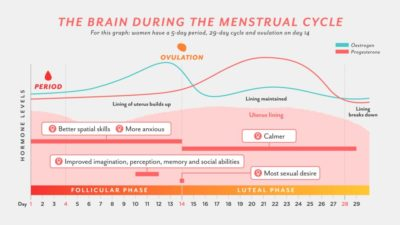 Illustration of Menus Menstruation Influence Whether To Positive Tests?