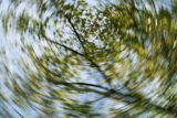 Dizziness, Stomach Pain, And Blurred Vision?