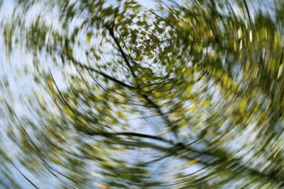Illustration of Dizziness, Stomach Pain, And Blurred Vision?