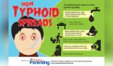 Why When Typhoid Fever Occurs High Fever At Night And Difficult Bowel Movements?