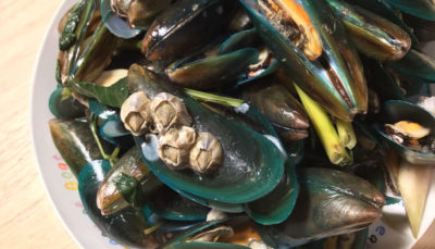 Illustration of The Cause Of Nausea Is Vomiting After Eating Green Mussels And High SGOT SGPT Lab Results?