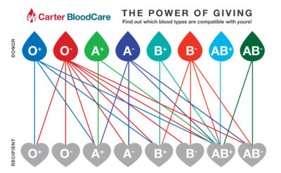 Illustration of Can Blood Type O Be A Donor To Blood Type AB?