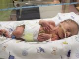 Is Hb Immunization Definitely Given To Newborns In The Hospital?