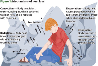 Illustration of How To Reduce Body Temperature Per Minute In Shock Patients?