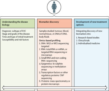 Illustration of Explanation Of The Results Of Lab Tests Of Malignant Epithelial Tumors?