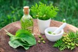Is It Safe To Take Herbal Medicines?
