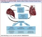 Lack Of Heart Beat And Whether Anemia?