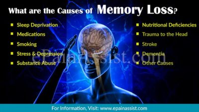 Illustration of Causes Of Memory Loss?