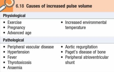 Illustration of Causes Of High Pulse?