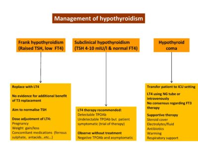 Illustration of Treatment For Patients With Hypothyroidism?