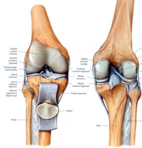 Illustration of Does The Injury To The Knee Have To Be Closed When Wearing Trousers?