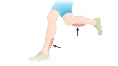 Illustration of Pain In The Calf Up To The Ankle?