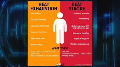 Illustration of Causes Dizziness And Body Heat?