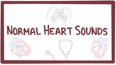 Illustration of Abnormal Heart Sounds In Babies Of 6 Months?