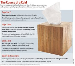 Illustration of The Cause Of Colds Does Not Go Away?