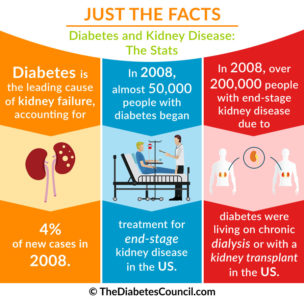 Illustration of How Long Does Stage 4 Kidney Failure Survive Without Dialysis?