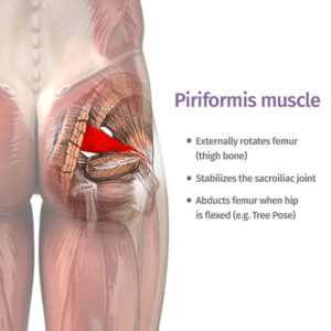 Illustration of Causes Of Pain In The Buttocks?