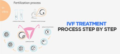 Illustration of Procedure In IVF Action?
