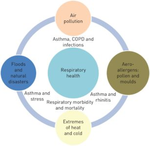 Illustration of Causes And Overcoming Respiratory Disorders?