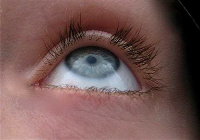 Illustration of How Long Can The Cut Eyelashes Grow Back?