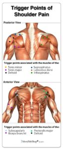 Illustration of Lumps In The Shoulder And Pain When Pressed?