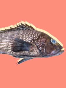 Illustration of Fishy-smelling Discharge Coming Out Of The Head Feels Itchy And The Body Itches With Reddish Spots?