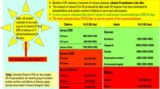 Is Vitamin D Can Be Obtained From Sun Exposure?