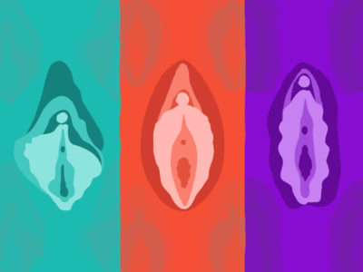 Illustration of The Size Of The Labia Minora Is Different?