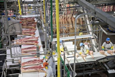 Illustration of Handling Of Meat Grows On The Back?