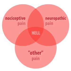 Illustration of The Cause Of The Emergence Of Pain That Arises In The Former Operation?