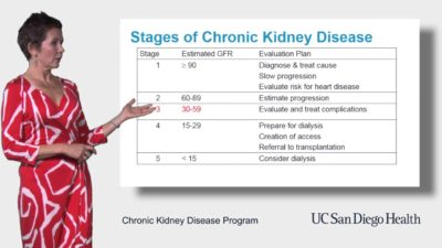 Illustration of How To Determine The Stage In Chronic Kidney Disease?