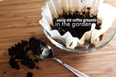 Illustration of The Use Of Coffee Grounds To Deal With Falling Injuries?