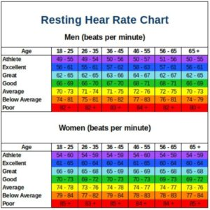 Illustration of Normal Heart Rate?