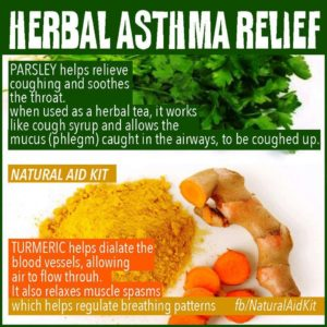 Illustration of The Use Of Herbal Products For Asthmatics?