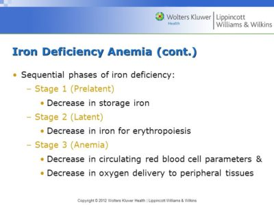 Illustration of An Explanation Of Early-stage Iron Deficiency Anemia?