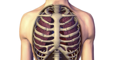 Illustration of Chest Pain And Ribs Due To Impact.?