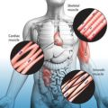 Twitching Throughout The Body And How To Overcome Them?