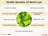 Side Effects Of Consumption Of Betel Leaf Boiled Water On Fertility?