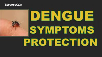 Illustration of Symptoms Of Dengue Fever And How To Overcome Them?