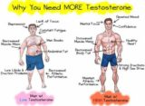 Handling Any Testosterone Deficiency To Any Specialist?