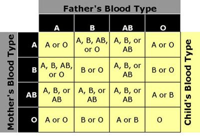 Illustration of Is It Possible For Parents With Blood Types O And A To Have Blood Type B Children?