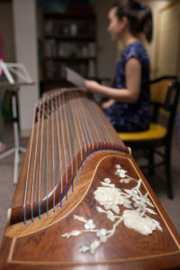 Illustration of Effects Of Zither For Pregnancy?