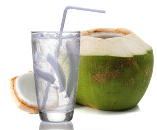 Illustration of Can I Drink Coconut Water And Milk When Typing?