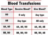Can Blood Type A Receive A Blood Transfusion From Group O +?